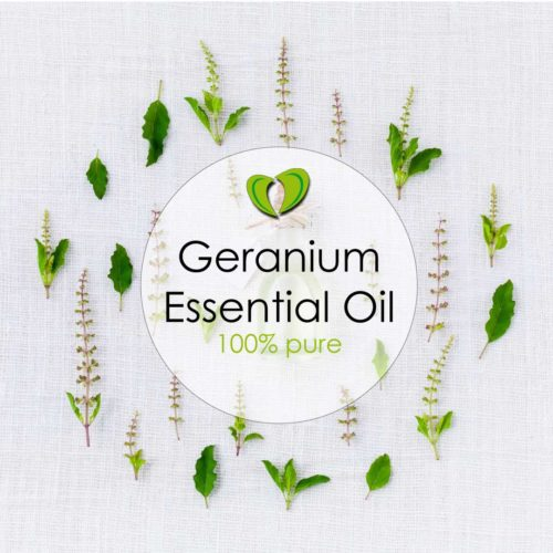 Geranium Essential Oil NZ