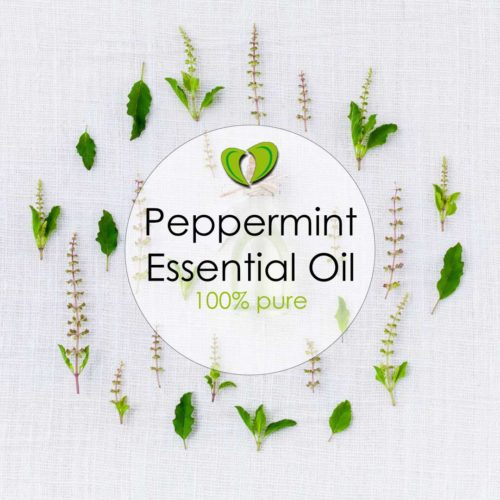 Buy Peppermint Essential Oil online