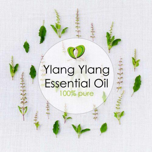 ylang ylang essential oil nz