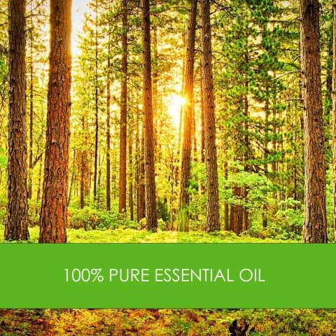 essential oil nz