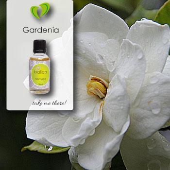 Gardenia Aroma Oil