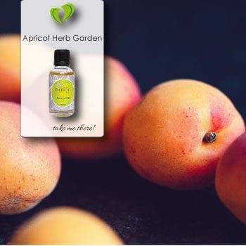 apricot herb garden