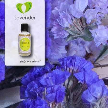 lavender aroma oil 30ml