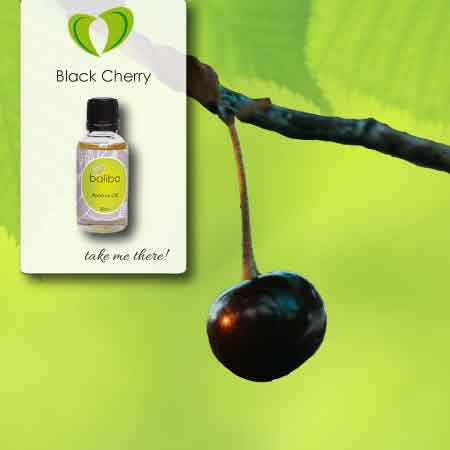 black cherry aroma oil