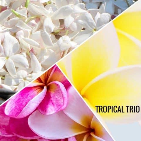 Aroma oil tropical trio